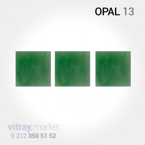 WD Opal 11 Vitray Cam...